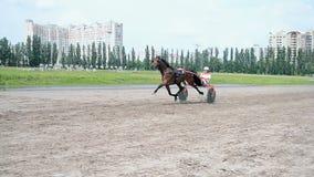Pista del cavallo durante la celebrazione di giorno della città di Kyiv a Kiev, Ucraina, video d archivio