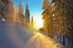 Pista del deporte de invierno Fotos de archivo