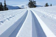 Pista del esquí Fotos de archivo libres de regalías