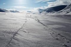 Pista del esquí en el Kungsleden fotos de archivo libres de regalías
