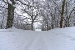 Pista del esquí en la nieve puesta en el bosque fotos de archivo libres de regalías