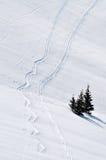Pista del esquí en nieve del polvo Imagenes de archivo