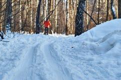 Pista del esquí en parque Imágenes de archivo libres de regalías