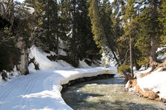 Pista del esquí a lo largo del río Foto de archivo