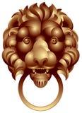 Pista del león Fotos de archivo libres de regalías