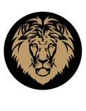 Pista del león Fotos de archivo