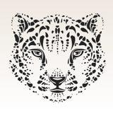 Pista del leopardo de nieve Imagen de archivo libre de regalías