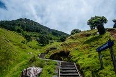 Pista del Mt Manganui a la cumbre Foto de archivo libre de regalías