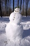 Pista del muñeco de nieve Foto de archivo