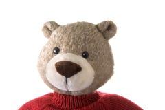 Pista del oso de peluche Fotografía de archivo