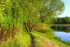 Pista del país cerca del lago imagen de archivo libre de regalías