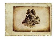 Pista del palo Foto de archivo libre de regalías