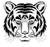 Pista del tigre ilustración del vector