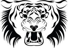 Pista del tigre Imagenes de archivo