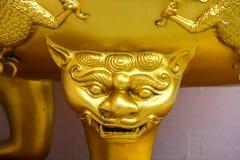 Pista del tigre del oro Foto de archivo libre de regalías