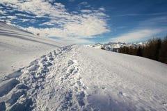 Pista della neve Fotografie Stock Libere da Diritti
