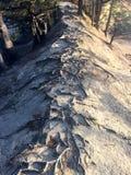 Pista della sabbia Immagini Stock
