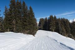 Pista dello sci di pista nella stazione sciistica alpina Immagine Stock