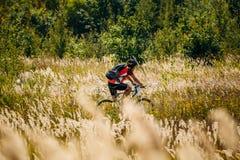 Pista di guida del ciclista del mountain bike in prato con Fotografia Stock Libera da Diritti