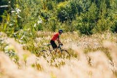 Pista di guida del ciclista del mountain bike in prato con i gras asciutti alti Immagini Stock Libere da Diritti
