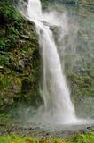Pista di Milford, Nuova Zelanda Immagini Stock