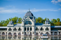 Pista di pattinaggio a Budapest in estate Immagini Stock