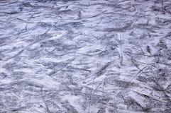 Pista di pattinaggio sul ghiaccio pattinante Immagine Stock