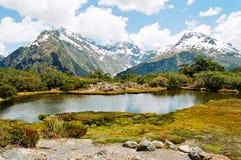 Pista di Routeburn, Nuova Zelanda Immagine Stock