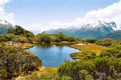 Pista di Routeburn, Nuova Zelanda Fotografie Stock