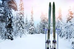 Pista di sci del paese trasversale con i retro sci e pali di sci di legno Fotografie Stock