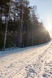 Pista di sci diretta nel legno di inverno al giorno soleggiato immagini stock