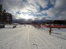 Pista di sci Xc in Svezia immagini stock
