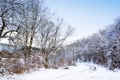 Pista do inverno entre árvores geadas na manhã Fotos de Stock Royalty Free