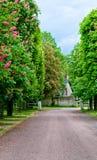 Pista do país Foto de Stock Royalty Free