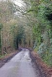 Pista do país no coração da linha lateral de Kent Country ambos os lados com árvores foto de stock