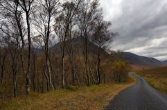Pista do país, Scotland Imagem de Stock