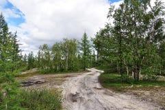 Pista en el bosque del verano y las nubes blancas grandes imágenes de archivo libres de regalías