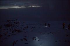 Pista en Kilimanjaro al pico más alto en el whisky de la ruta de Machame de cinco días foto de archivo libre de regalías