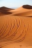 Pista en la arena Imagen de archivo libre de regalías