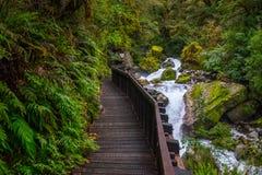 Pista en la caída mariana situada en el parque nacional de Fiordland, Milford Sound, Nueva Zelanda del lago imagen de archivo libre de regalías