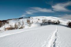 Pista en la nieve Foto de archivo libre de regalías