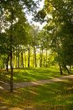 Pista en parque del otoño Fotos de archivo libres de regalías