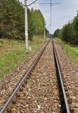 Pista ferroviaria en campo Fotos de archivo libres de regalías