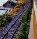Pista ferroviaria rodeada por el verdor Imagenes de archivo