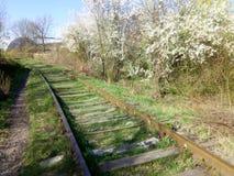 Pista ferroviaria vieja Fotografía de archivo