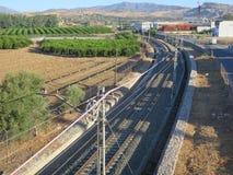 Pista ferroviaria y arboleda anaranjada Fotografía de archivo