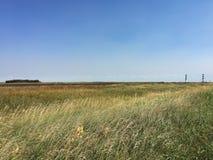 Pista ferroviaria y prado en pradera debajo del cielo azul Imágenes de archivo libres de regalías