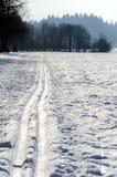 Pista nórdica del esquí Imagenes de archivo