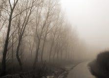 Pista nebbiosa del paese fotografie stock