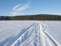 Pista nel campo nevoso sulla priorità bassa della foresta Immagine Stock Libera da Diritti